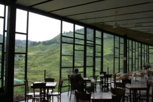 Boh Tea Plantation Cafe in Cameron Highlands, Malaysia