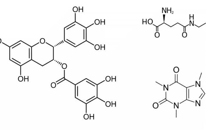 Chemical components in tea