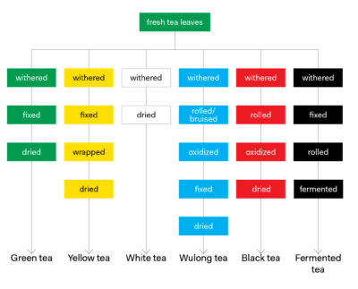 Tea Processing Chart