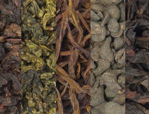 The Oolong Compendium