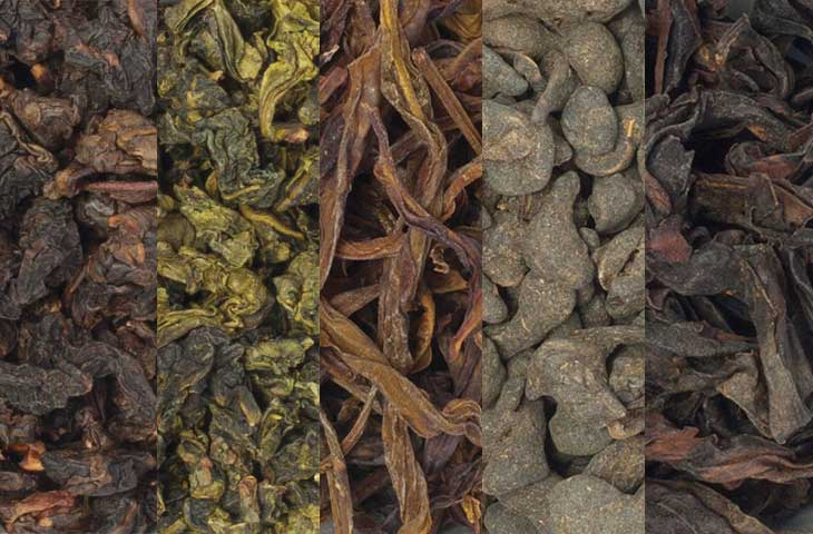 Guide to Oolong Tea