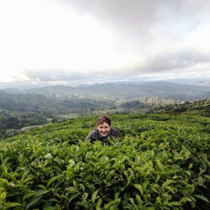 Jordan G Hardin Tea