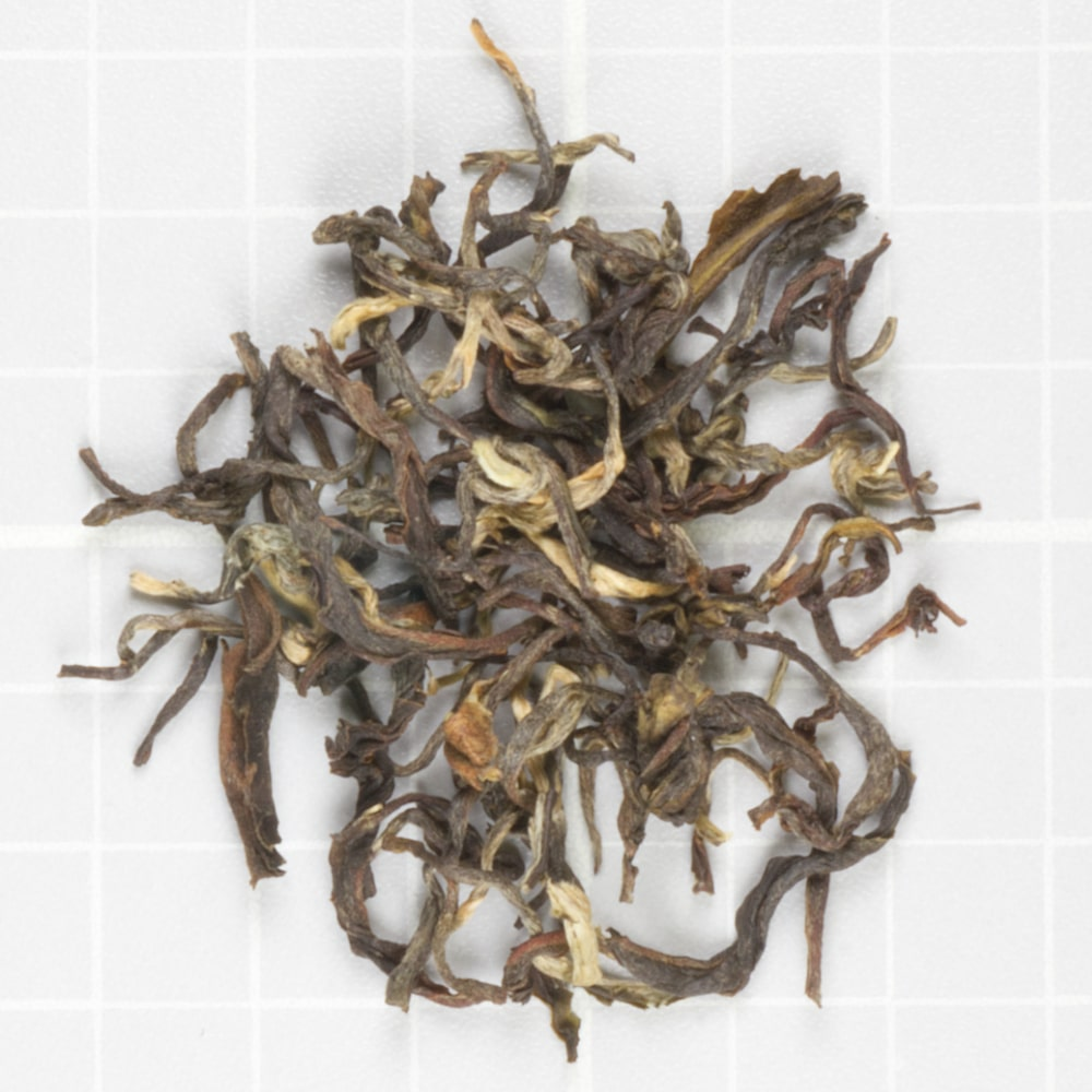 Glenburn Autumn Oolong
