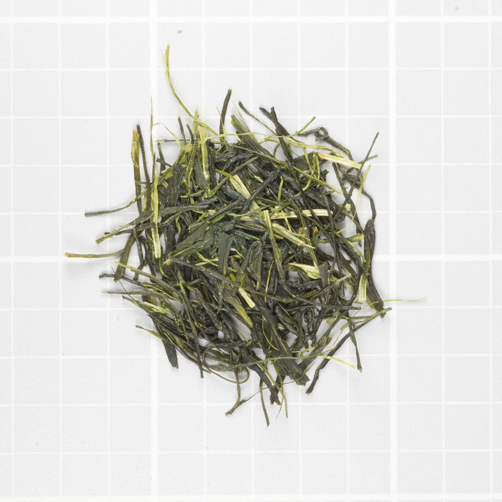 Sencha of the Spring Sun