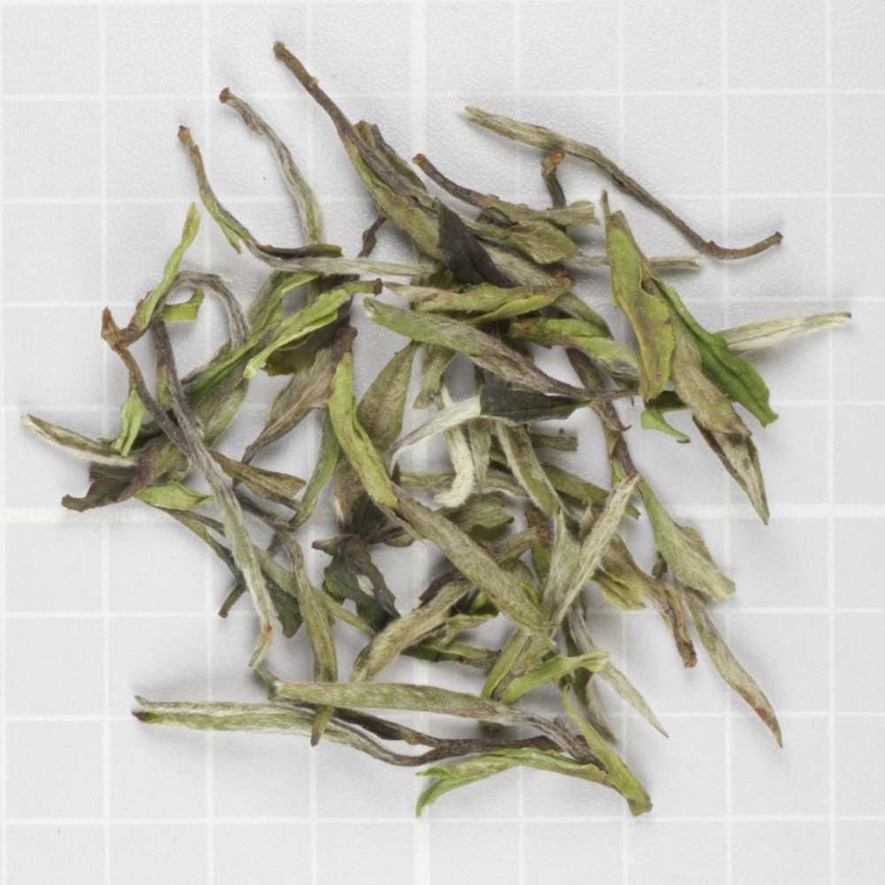 White Peony from Teawala
