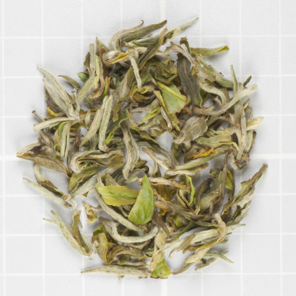 Exotic Spring White from Teabox