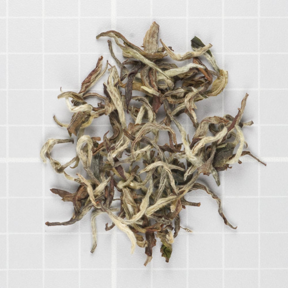 White Prakash sold by Nepal Tea LLC