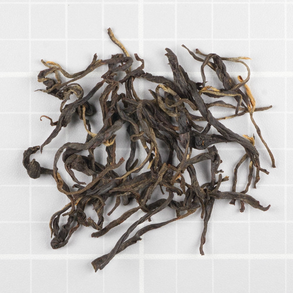 Koliapani Signature Autumnal Black Assam