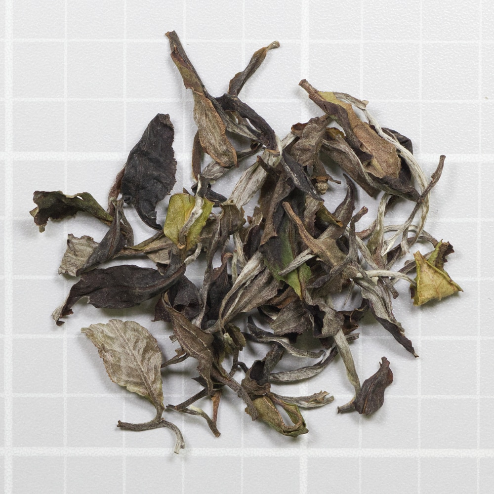 May White Tea from Vietnam